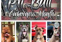 Pitbull Awareness