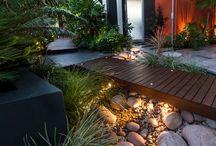 Contemporary exterior gardens