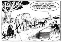 Het Assessment