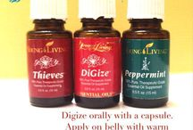 oils for stomach bug