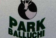 Hotel PARK-BALUCHI Panipat | Budget Hotels Panipat