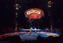 Big Apple Circus / by StateTheatre NJ
