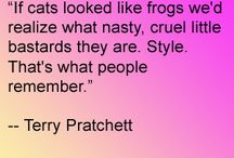 Terry Pratchett quotes