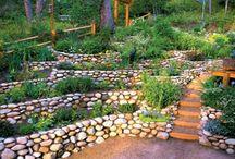 Hagen / Ideer til hagen vår
