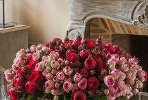 Flower/vase