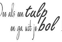 Dutch lettering