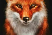 fox, лиса, рыжая