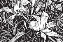 Раскраски (цветы, растения)