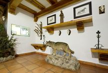 Parque del Hosquillo / El Parque Cinegético del Hosquillo ocupa una extensión de 910 hectáreas, en la Serranía de Cuenca. Se encuentra rodeado de altos e inaccesibles riscos que descienden en empinadas laderas hasta el estrecho valle que abren las cristalinas aguas del río Escabas. En todo este terreno se pueden ver diferentes especies tanto animales como vegetales.