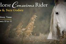 Conscious Horse Conscious Rider / Access Consciousness® Class facilitated by #GaryDouglas and #SuzyGodzy #ConsciousHorseConsciousRider #Horse #Costarricense #Equestrian