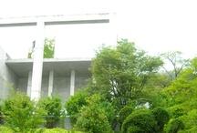 奇跡の星の植物館 [ Kiseki No Hoshi BOTANICAL MUSEUM ] / 兵庫県の淡路島にある「奇跡の星の植物館」で撮った写真です。