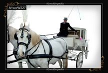 Wedding Horse Carriage Service / Browse here for wedding horse carriage service in UK. For booking call us at 7958 330043 or visit www.a1ww.co.uk
