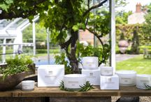 Rosemary, Fougere and Camphor / Complex and mysterious, the perfumed top notes of rosemary and thyme are given a smoky, sensual edge with lavender, armoise and woody base notes of cedar, camphor and pine needles.  Luxury Rosemary, Fougere and Camphor Scented Candles from Rathbornes.  http://rathbornes1488.com/collections/all