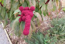 Lieux à visiter / Jardin-verger conservatoire de légumes et de fruitiers