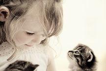 Djur och vänner