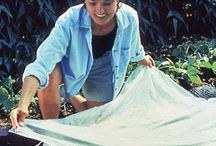 Plant Cover-Up! / All about protecting your plants from harsh weather conditions