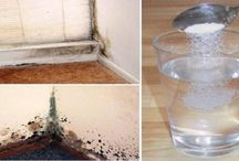 Limpar mofo das paredes