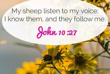 Versículos de la biblia