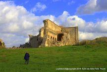 Arte Cistercense in Sardegna: il Percorso del Sacro