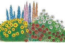 návrh kvetinový záhon