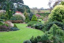 zeitgenössische Gärten