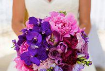 esküvő2 / lila -rózsaszín