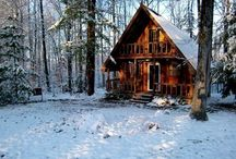 Livin' on the woods / Because I need a damn log cabin! / by Gregor Machado