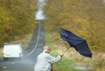뒤집힌우산