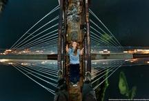 Amazing Photography