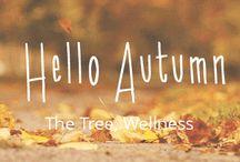 Autumn TheTree2015