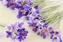 flored