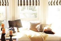Window dressings / by Stacy Evatt