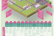ux / experience maps