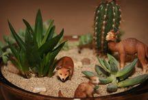 i love.... gardening / by Ivy Motuyang