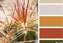 renk paletleri