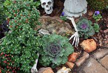 Random / Garden ideas