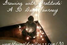Growing with Gratitude / Growing with Gratitude: a 30 Day Journey http://wombtoworldwellness.com/30 / by Xandra O'Neill