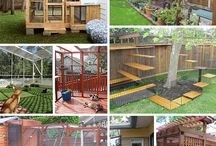 Cat Enlosure/Catio ideas