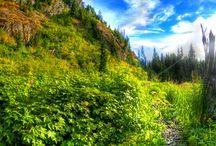 nature-beautiful