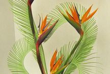 Flower design & ideas