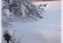 *  Sníh  *