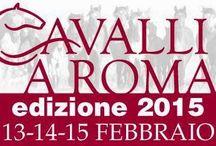 Cavalli a Roma - Salone dell'equitazione e dell'ippica / http://www.hdtvone.tv/videos/2015/02/13/cavalli-a-roma-salone-dellequitazione-e-dellippica-13-14-15-febbraio-fiera-di-roma