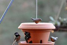 Vogelhäuser / BirdHouse