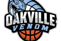 basketball logo2