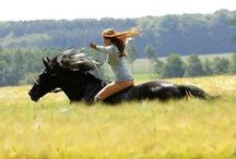 Shooting Horse and Girl