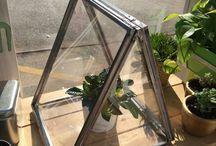 urbanserra / Greenhouse for indoor