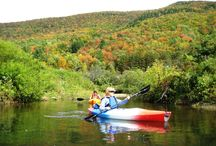 Kayaking pictures / Pictures from our kayaking adventures. Appalachian Trail Adventures provides an all-inclusive vacations offering customized guided half or full day hikes for all ability levels along the Appalachian Trail. The half-day hikes are followed by an afternoon with a variety of options, such as: relaxing around the pool, kayaking either on a lake or flat water river, a caving trip, an excursion to local attractions or a visit to a quaint New England village.