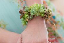 Gardenflowering