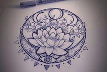 Lotosové Květy