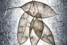 """Exhibition """"MAJA HRNJAK"""" / """"A fotografia da croata Maja Hrnjak nos transporta para uma aparente realidade cercada de fragilidade.   A artista abre espaço para actuação do nosso imaginário, não preenche todas as lacunas. Os trabalhos permitem uma redefinição da nossa noção de realismo e nos convidam a pensar sobre a magia de ver o invisível através da fotografia"""" (José Roberto Moreira, curador e galerista)."""